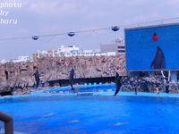 名古屋港水族館 ②