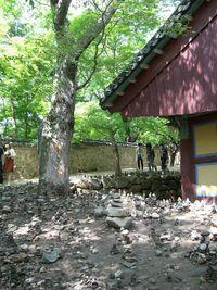 仏国寺2サムネイル