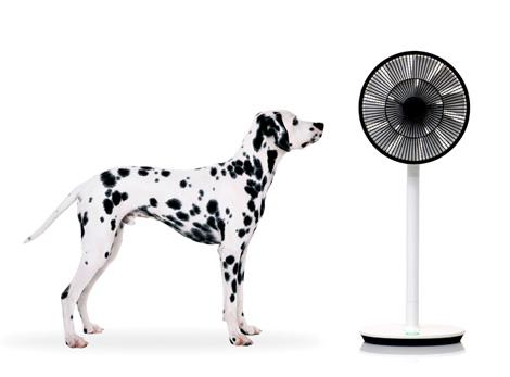 次世代扇風機