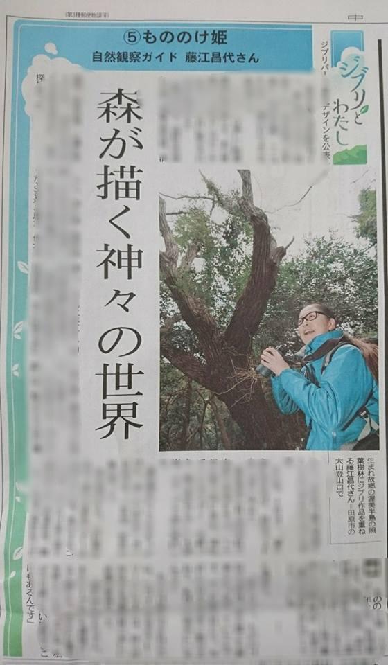 【メディア掲載】愛知で屋久島を感じる!藤江昌代さんのツアーガイドが掲載されました