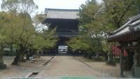 大樹寺見学!