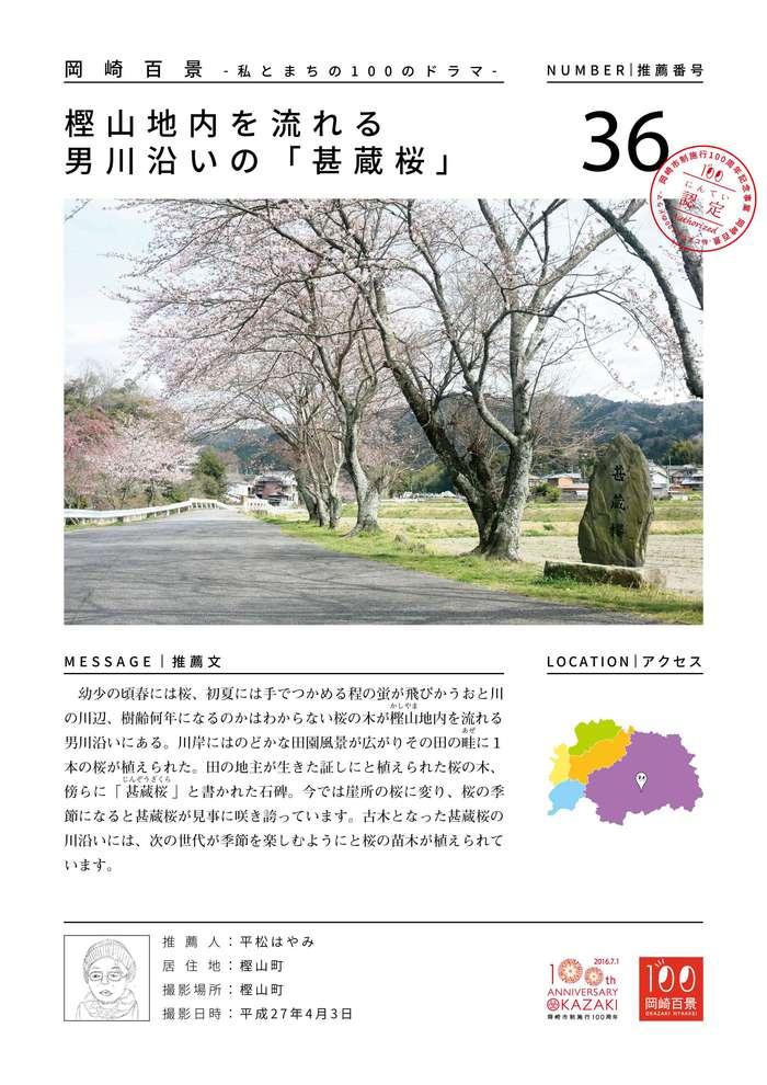 樫山地内を流れる男川沿いの「甚蔵桜」 @岡崎百景