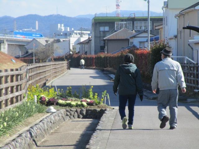 なのはな遊歩道 冬景色から春へ