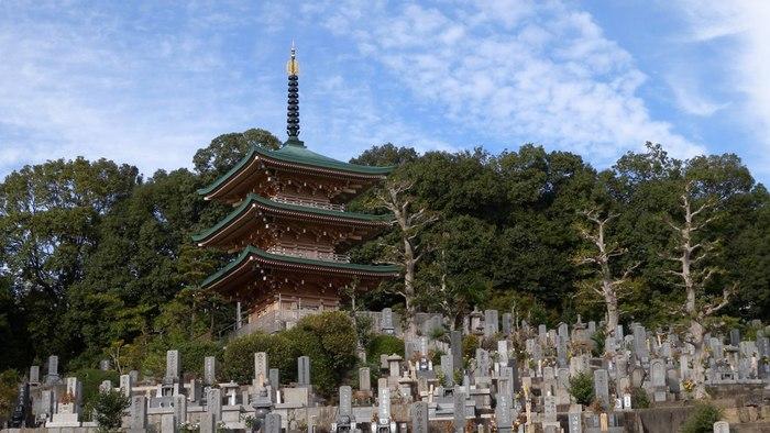 岡崎・高みの風景(その7)