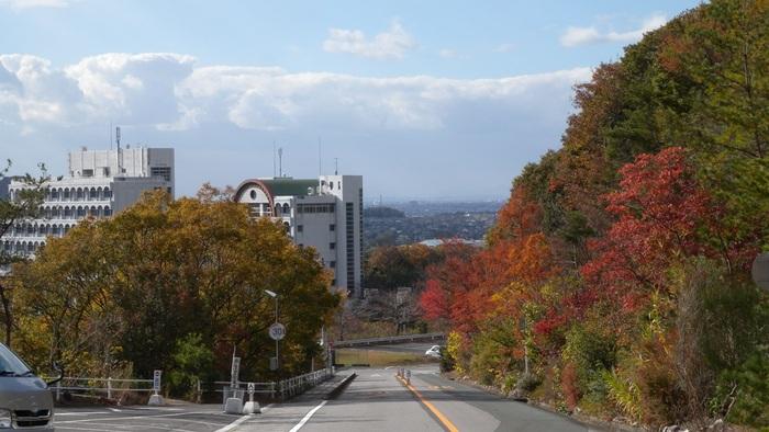岡崎・高みの風景(その8)