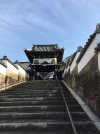 雪化粧の随念寺