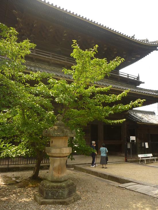 大樹寺を訪れる人増加中!?
