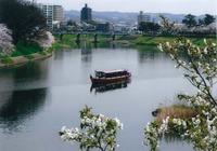 春は屋形舟で