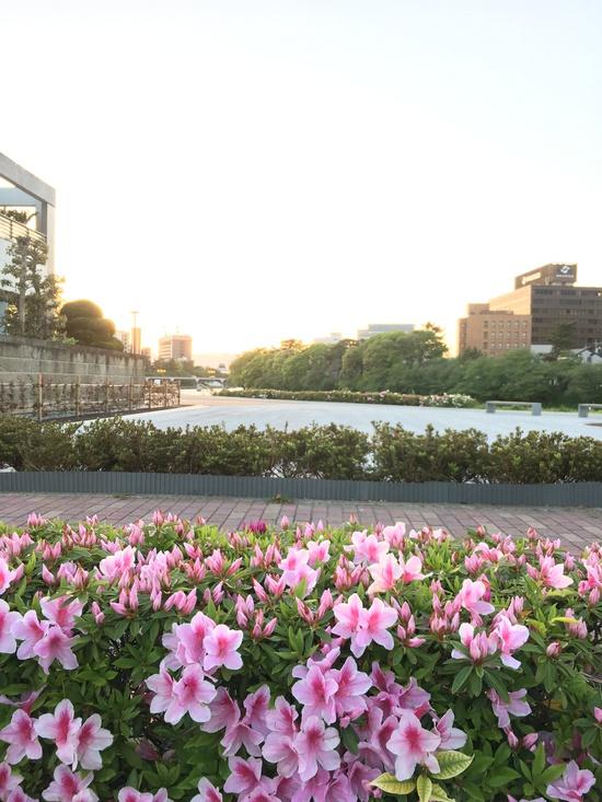 吹矢橋公園の細かな仕掛けに驚いた