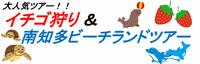 いちご狩り&南知多ビーチランドツアー!
