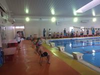 三河地区障がい者水泳記録会
