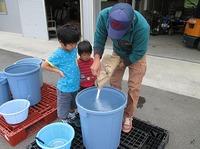 皆で自然栽培稲作 塩水選、温湯殺菌、浸種