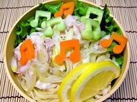 7月5日 塩だれでサラダ冷麺のお弁当☆ 2011/07/05 07:32:02