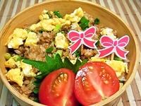 8月10日 作り置き肉味噌de甘辛炒飯のお弁当☆ 2012/08/10 07:59:50