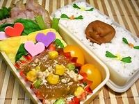 9月14日 塩チャーシューと冬瓜の中華煮のお弁当☆ 2012/09/14 09:03:37