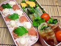 1月31日 ネギ塩肉巻きとたらこマヨご飯のお弁当☆ 2012/01/31 20:59:31