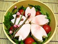 3月31日 春・塩麹鶏そぼろご飯deさくらおにぎり弁当☆ 2012/03/31 08:15:59