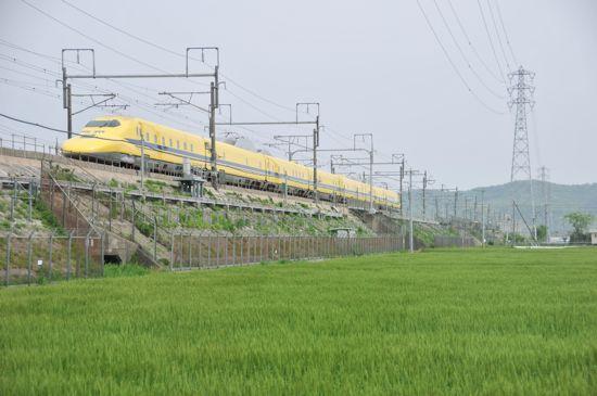 合歓木町の新幹線、麦畑、水田