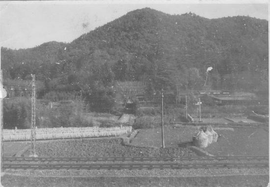 古い写真が生き返る時・藤川関山神社を臨む