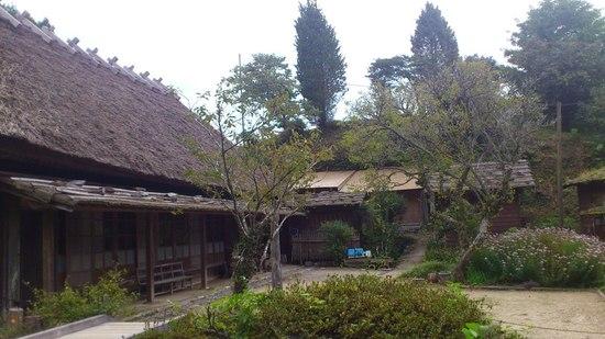 茅葺き屋敷とアサギマダラ