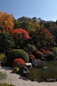 奥殿陣屋 蓬莱の庭