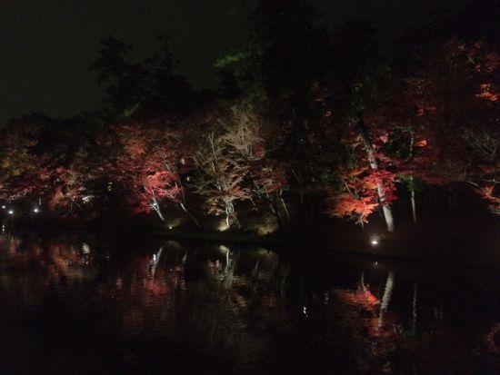 紅葉の東公園
