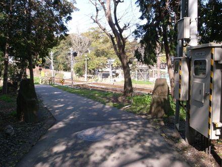 大宮様の参道