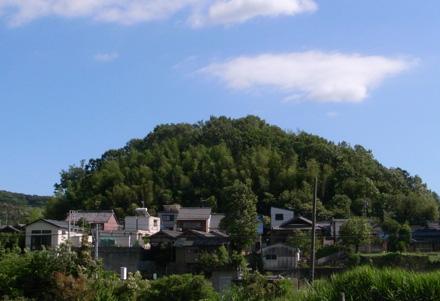 藤川地区-薬師山(やくしやま)