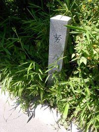 坂の街・岡崎-努力坂