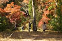 #6 in 瀬戸レポ 岩屋堂公園〜定光寺