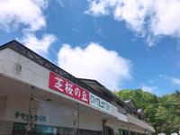 茶臼山 芝桜ツアー