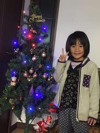 クリスマスの準備! 2016/11/22 14:41:54