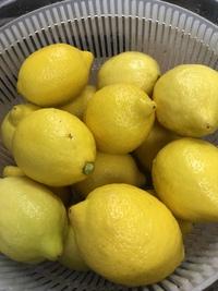 自家製レモネード生姜を入れベトナム風。