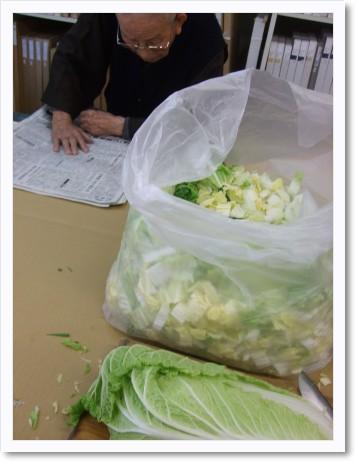 白菜切りまーす。