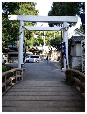 桜町本通りから入る鳥居