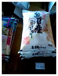 お米を食べよう!!!