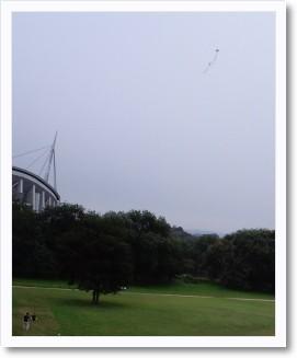 白浜公園1