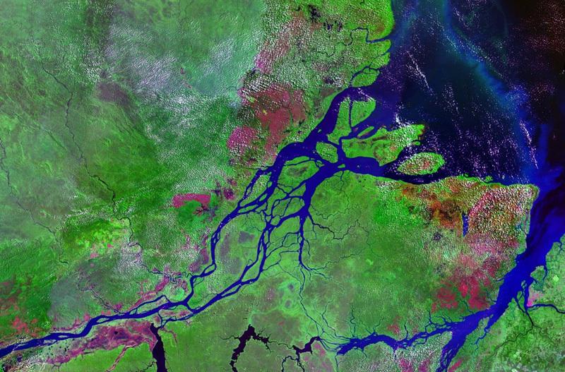 異常気象でアマゾン川が・・・(再掲)