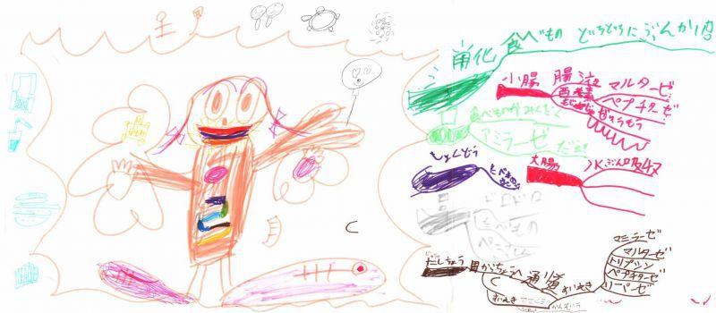 みんなのマインドマップ~消化管(3年生)