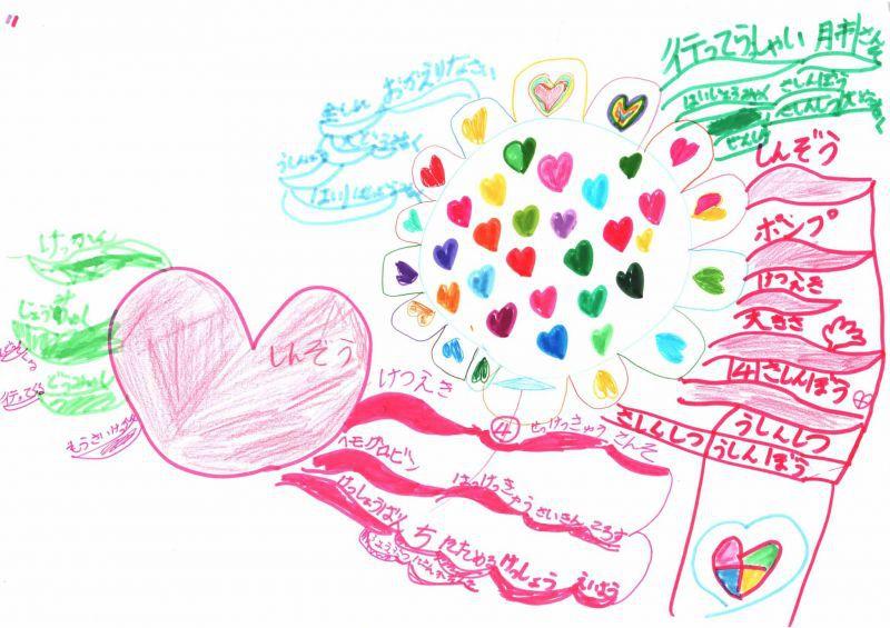 みんなのマインドマップ~心臓と血液(小学2年生)