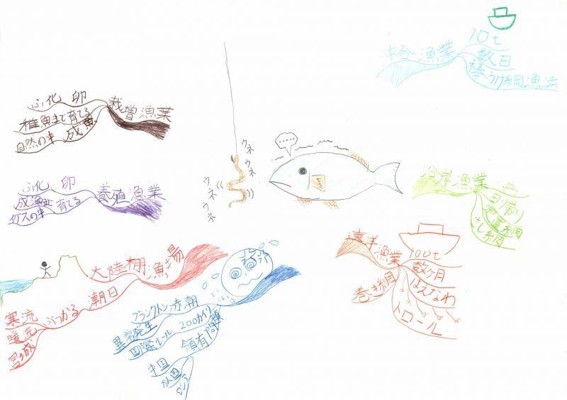 みんなのマインドマップ~日本の水産業