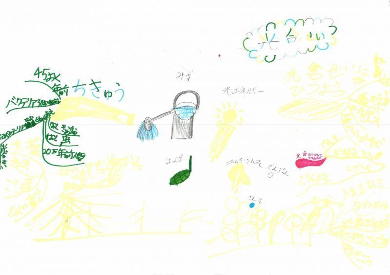 みんなのマインドマップ~日光と植物の育ち方