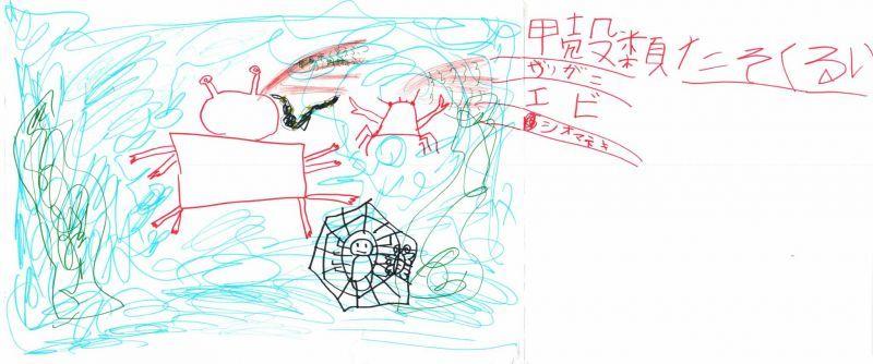 みんなのマインドマップ~節足動物(小学1年生)