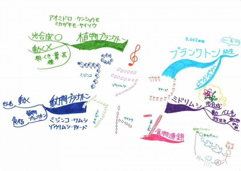 みんなのマインドマップ~プランクトン(小学5・6年生)