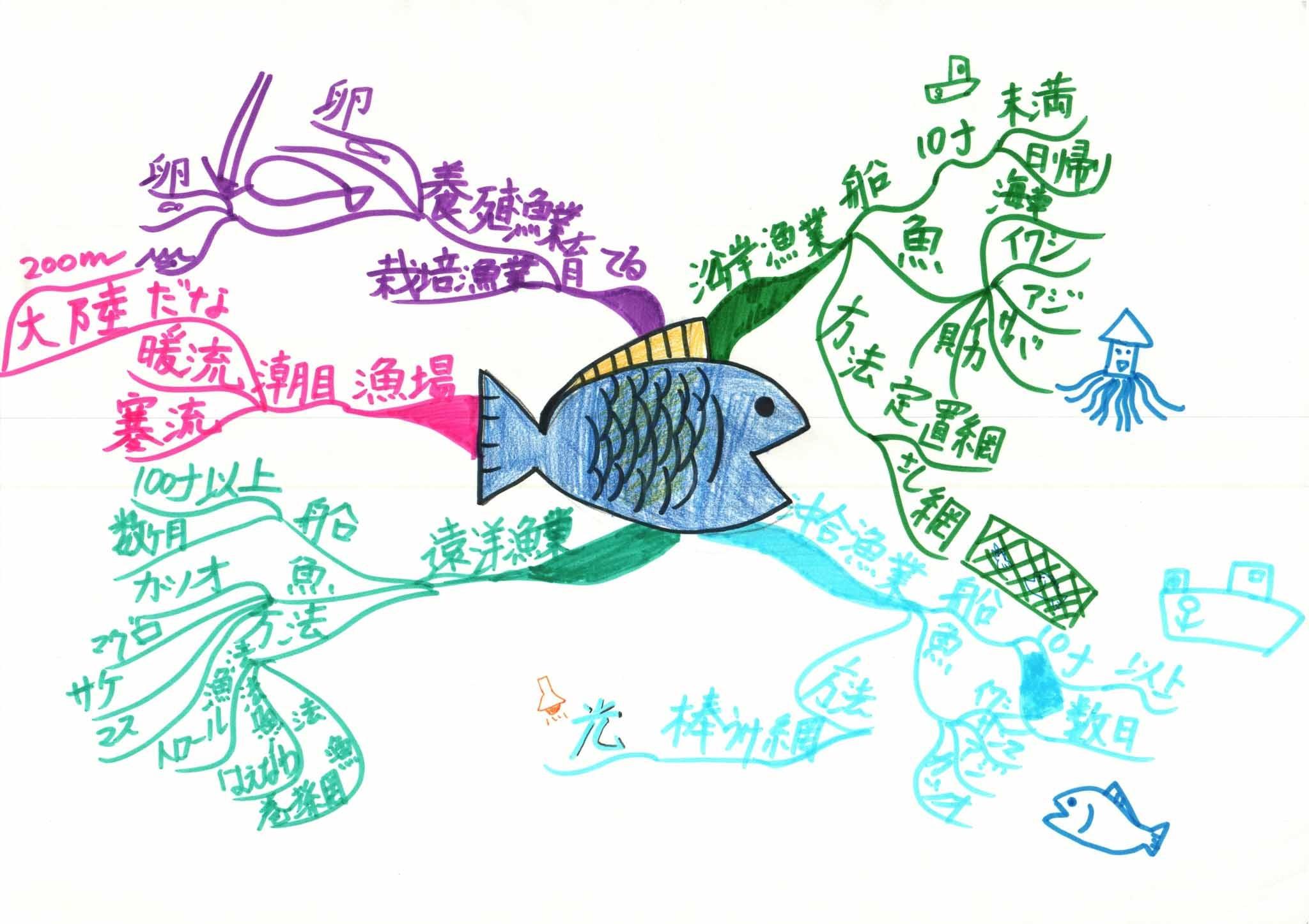 みんなのマインドマップ~日本の水産業(小学4~5年生)