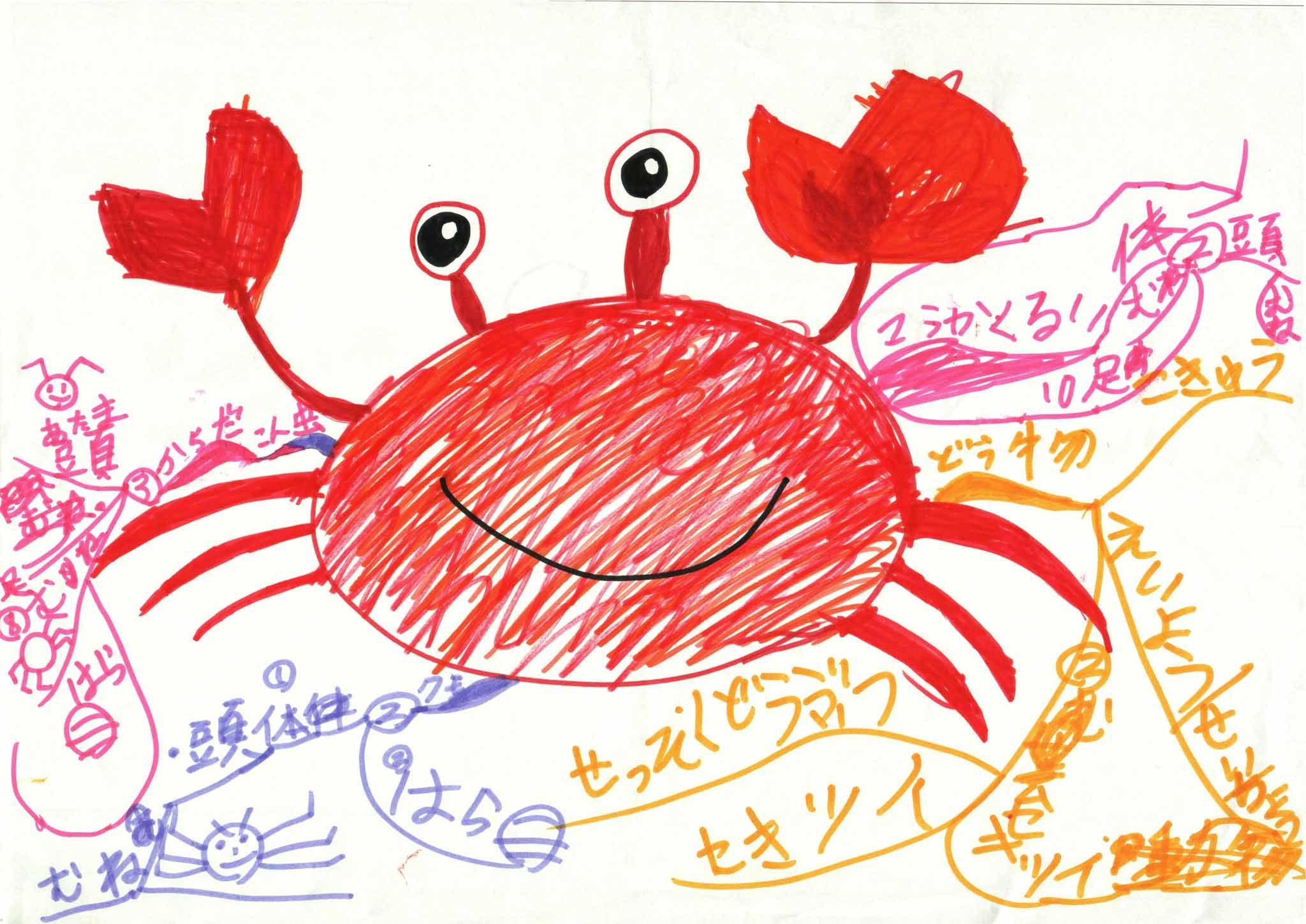みんなのマインドマップ~節足動物(小学1・3年生)