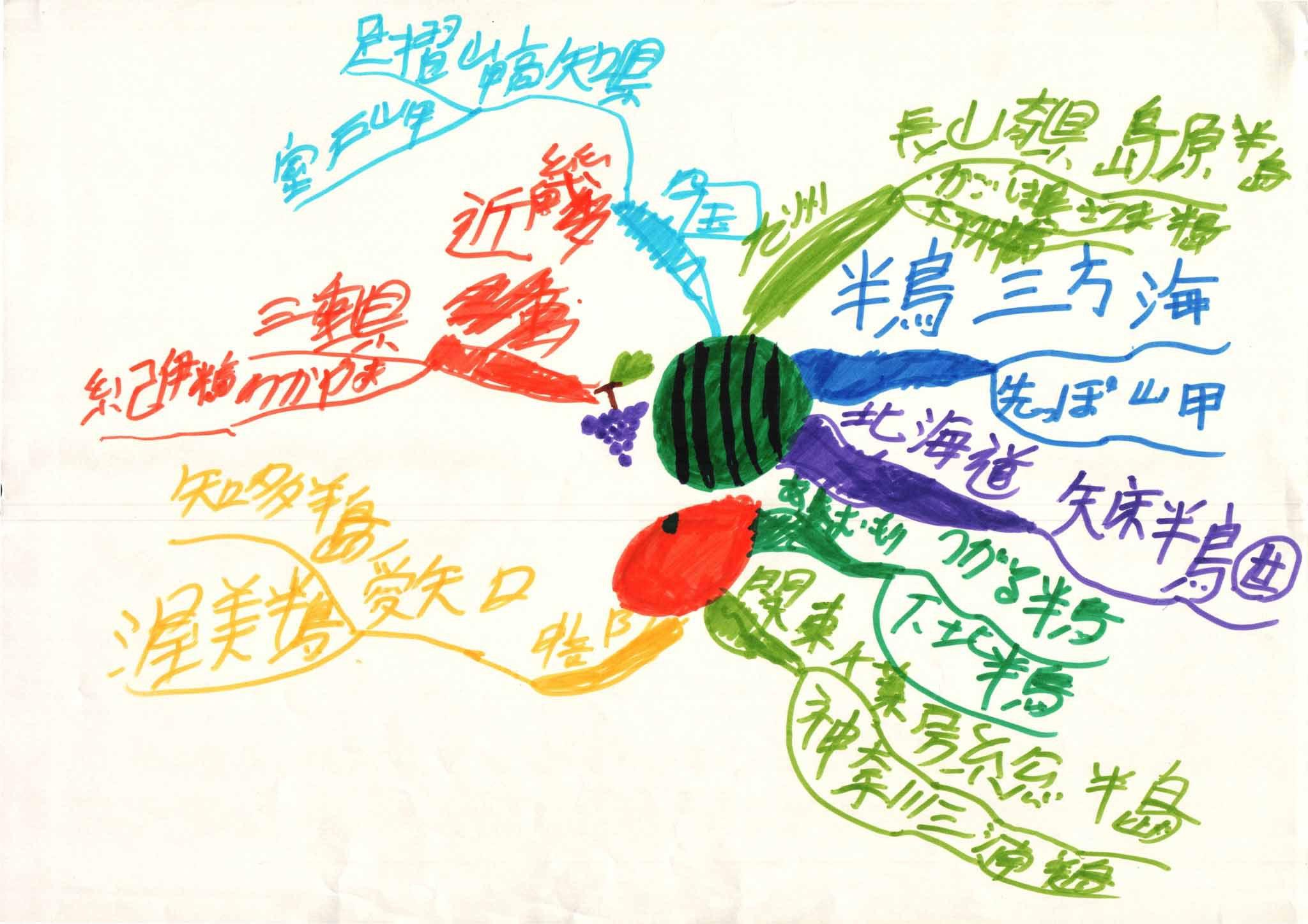 みんなのマインドマップ~半島と岬(小学4年生)