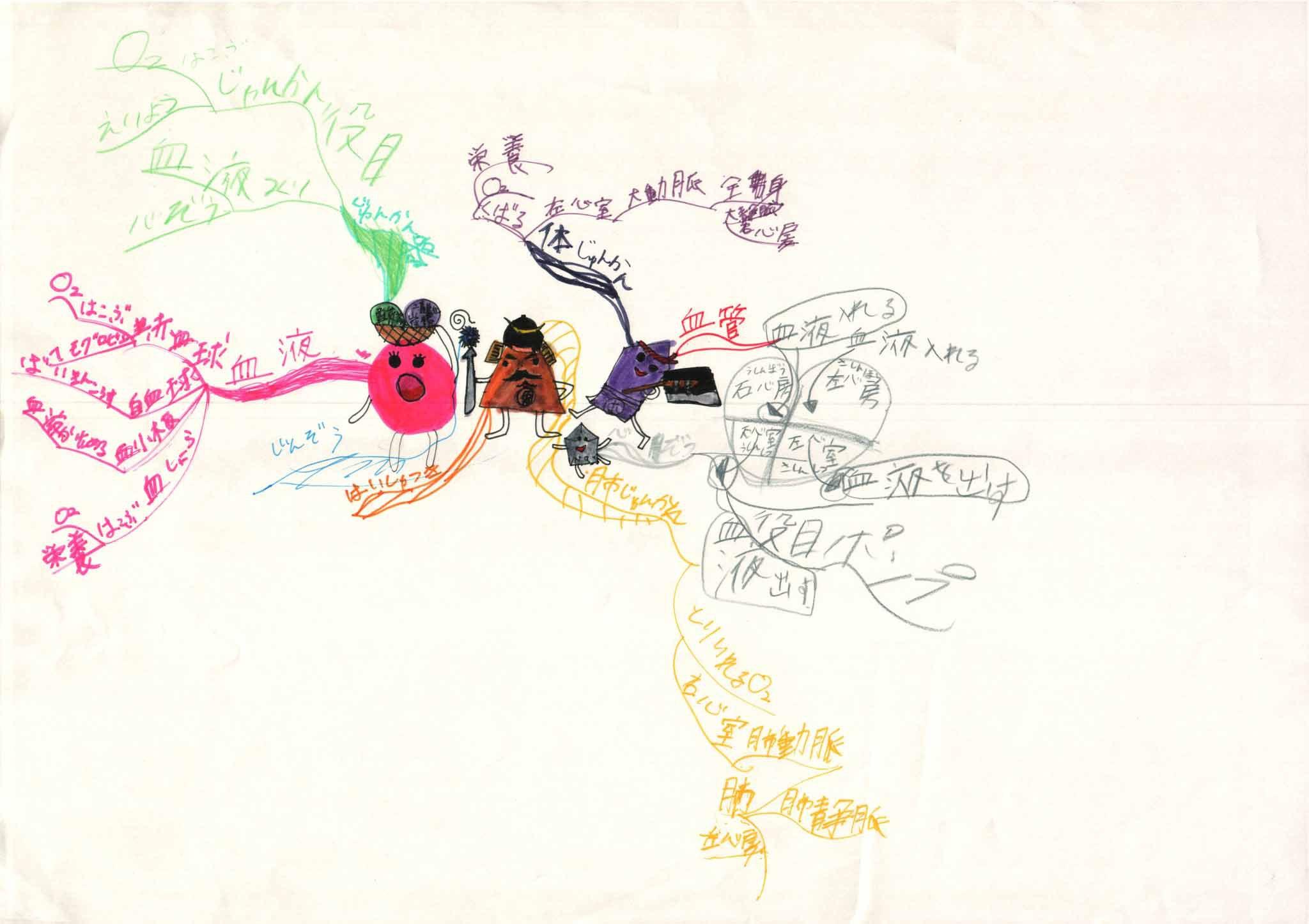 みんなのマインドマップ~血液の循環とじん臓