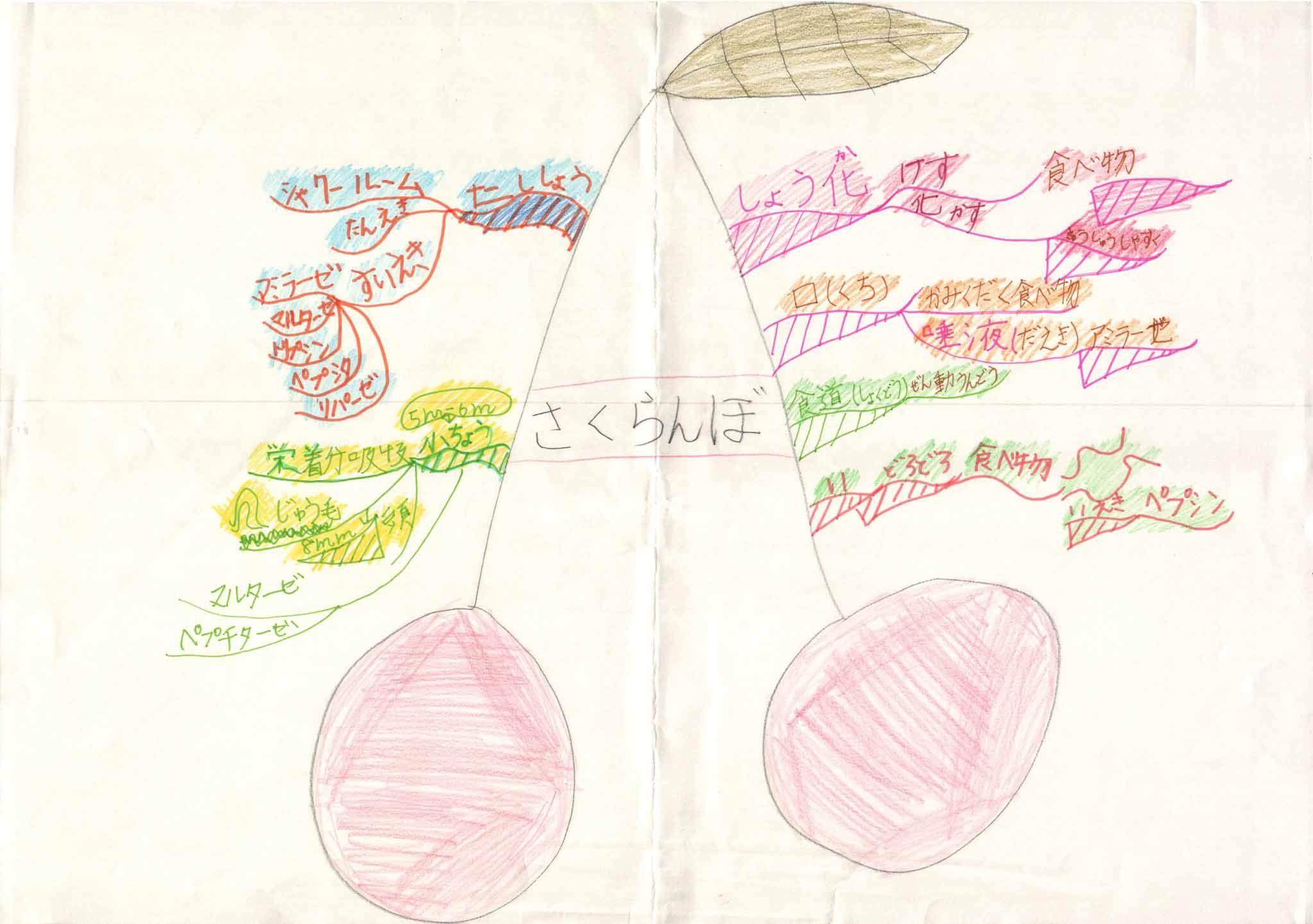 みんなのマインドマップ~消化管(小学2~3年生)