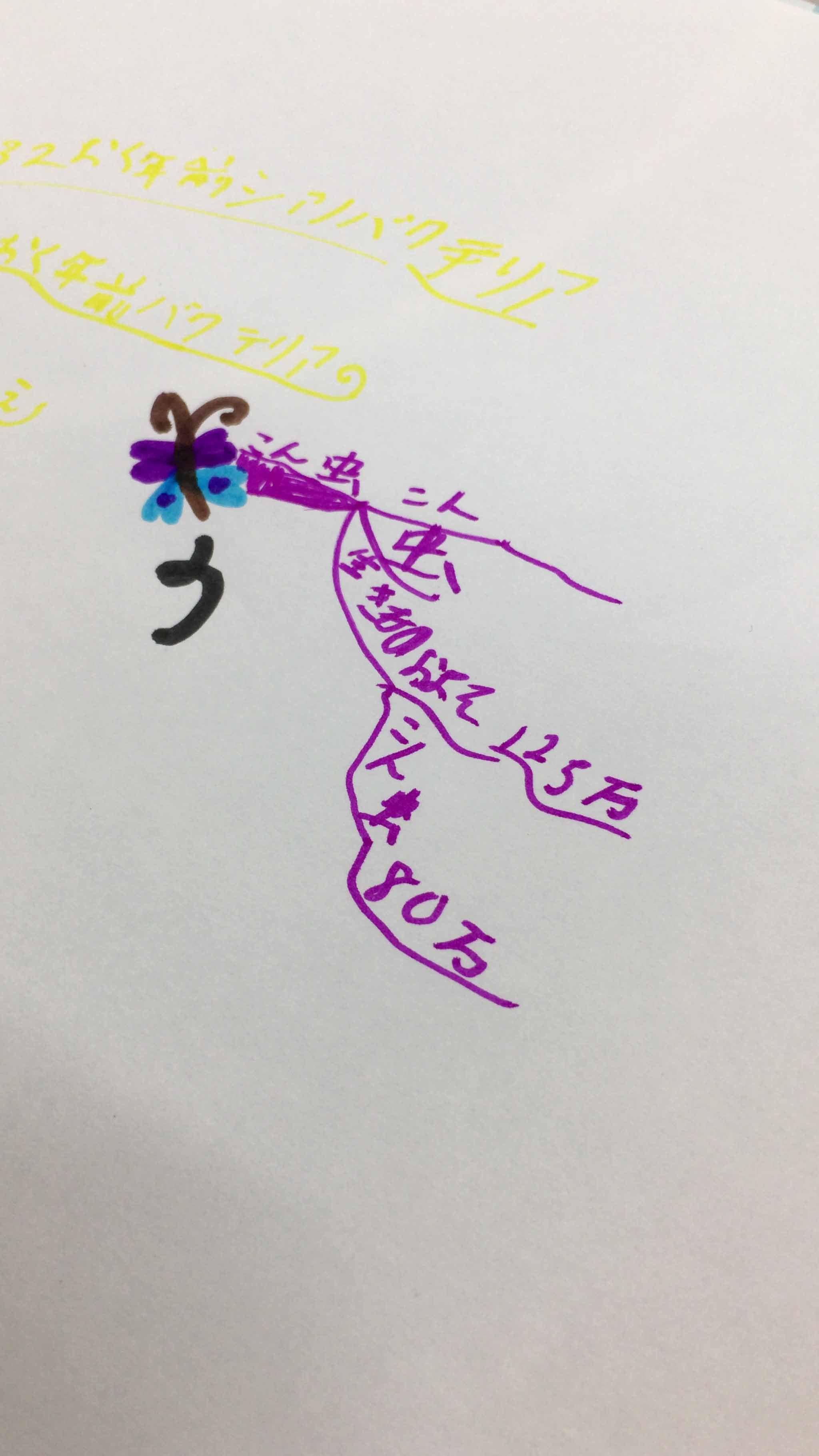 先週の教室より~昆虫は何種類いるの?